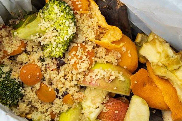 inside a food waste bin